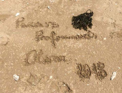 Séjour pédago-éducatif à l'Ile d'Oléron