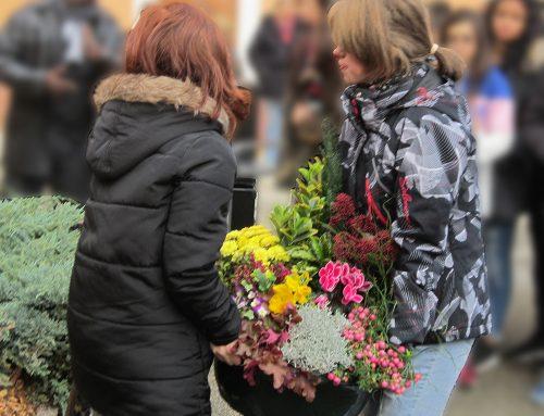 Dépôt d'une gerbe de fleurs en hommage à l'abbé de L'Épée